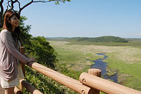 コッタロ湿原展望台から眺める景色は、太古をほうふつさせる=標茶町で