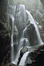 竜が水を吐き出すような姿から竜吐水とも呼ばれる中津渓谷の雨竜の滝