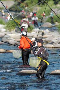 アユの友釣り解禁で早朝から川に糸を垂らす愛好者たち=郡上市八幡町の吉田川で
