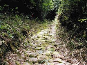 発掘調査で新たに見つかった石畳の道=高山市一之宮町で