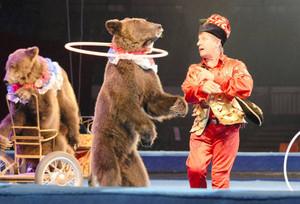 立ち上がって首でフラフープを回すクマ=名古屋市中区の県体育館で
