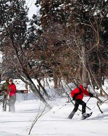 スノーシューを楽しむグループ=なべくら高原スキー場で