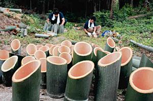 竹を切りランタンを作る職員たち=富山市古沢の市ファミリーパークで