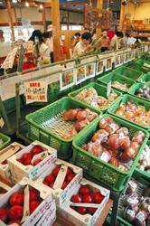 新鮮野菜が人気。どんぐり横丁