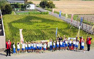 4種類の古代米で利長くんを表現した田んぼアート=高岡市麻生谷で