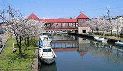 桜が咲くころが美しい内川と東橋(資料)