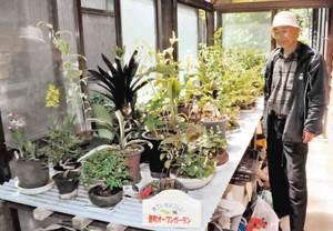丹精した盆栽が並ぶオープンガーデン=七尾市田鶴浜町で