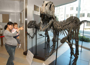 恐竜の全身骨格模型を眺める親子連れ=福井市のホテルフジタ福井1階で