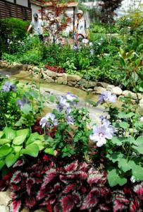 夏に咲く観葉植物を集め、涼しげな風情を演出する「花の地球館」=可児市瀬田で