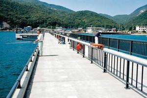 丹生漁港環境広場に完成した釣り桟橋=美浜町丹生で