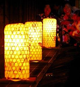 夏の夜をほのかな明かりが幻想的に彩る「森ほたる」=4日午後8時20分、森町で(袴田貴資撮影)