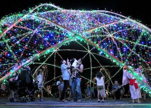 夏の夜空を色とりどりに彩るイルミネーション=東近江市池庄町のひばり公園で