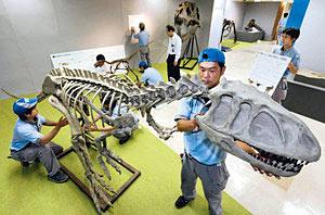 大型肉食恐竜の全身骨格が組み立てられるなど準備が進む「恐竜の王国」会場=金沢市武蔵町で
