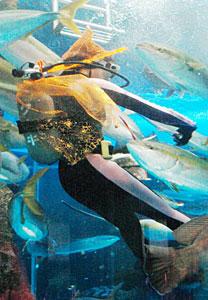 とんがり帽子とマントを身に着けて潜水するダイバー=魚津水族館で