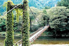 揖斐川に架かる「恋のつり橋」