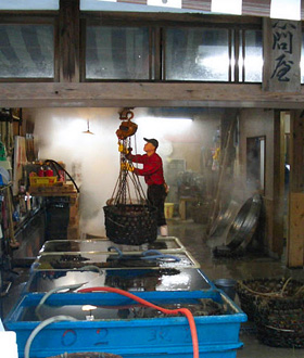 相木魚問屋の越前がにの釜揚げ風景(資料)