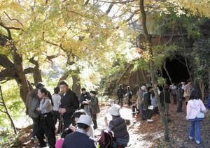 トンネルや紅葉を楽しみながら散策する家族連れら=春日井市の旧国鉄中央線廃線跡で