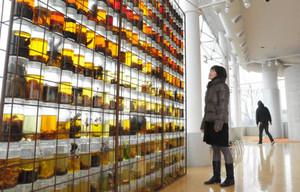 草花が入った一面の瓶など個性的な作品が並ぶ会場=清須市はるひ美術館で