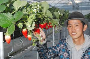 「地域や消費者とのつながりを大切に、イチゴ作りを続けたい」と意欲を語る野崎真一さん=常滑市苅屋で