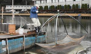 肌寒い中、早朝から漁に出て、網を引き揚げる人たち=穴水町で