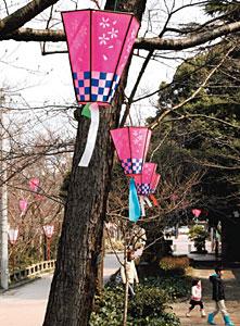 ぼんぼりを飾って開花を待つばかりの桜並木=高岡古城公園で