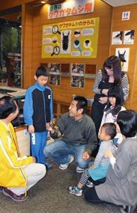 ヘラクレスオオカブトに見入る来園者ら=磐田市竜洋昆虫自然観察公園で