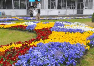 色とりどりの花でデザインされた花壇を審査する審査員ら=松本市の旭町小で