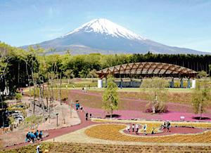 富士山とともに過ごせる「樹空の森」