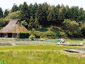 かやぶき屋根の民家の前に広がる湿地帯と木道