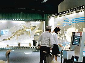 生命の海科学館