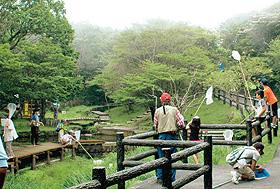 マーキング調査のため、捕虫網を手にアカトンボを追いかける子どもら=三重県菰野町で