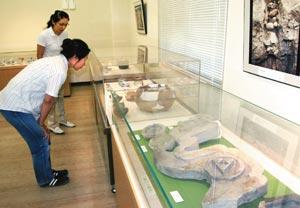 掛川城跡から出土した戦国~江戸時代の遺物を紹介した掛川城展=掛川市千羽の埋蔵文化財センターで