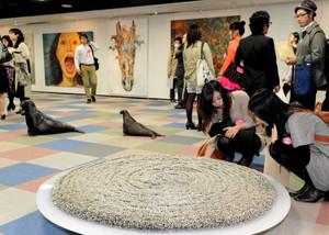 若手芸術家の力作が並ぶ会場=名古屋市中区で