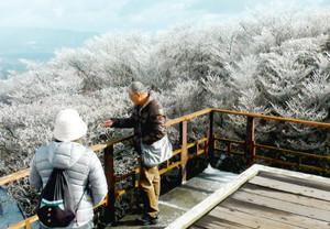 真っ白な樹氷を楽しむ観光客=菰野町の御在所岳で(御在所ロープウエイ提供)