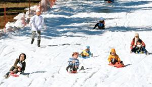 そりで滑走を楽しむ来場者たち=豊田市旭八幡町で