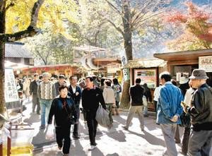 平日でも観光客の多い香嵐渓=豊田市足助地区で