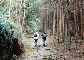 静寂に包まれた馬越峠の石畳を歩く旅行者