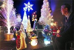 クリスマス気分を満喫できるイルミネーション=静岡市葵区西草深町の日本人形博物館・日本招き猫館で