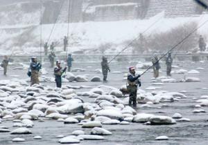 降りしきる雪の中でさおを持つ釣り人ら=郡上市八幡町の吉田川で