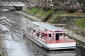 つぼみをつけた桜並木の間を進む遊覧船=富山市で