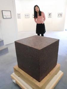 社会に対する哲学を反映させた作品が並ぶ=名古屋市中区栄の名古屋画廊で