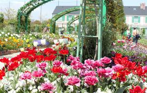世界各国のチューリップなどで彩られた花の美術館=浜松市西区の浜名湖ガーデンパークで