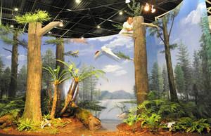ジュラ紀中期の中国遼寧省の環境を復元したジオラマの設置作業を進めるスタッフ=勝山市の県立恐竜博物館で