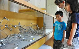 恐竜模型などのねじアートを目を輝かせながら見る子どもたち=勝山市立図書館で
