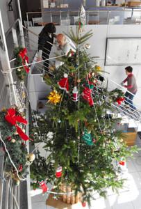 華やかに飾られたモミの木のクリスマスツリー=下諏訪町西高木の町立諏訪湖博物館・赤彦記念館ロビーで