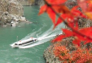 運航再開1周年で運賃が半額となるウオータージェット船=熊野市紀和町で