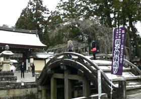 多賀大社の大鳥居をくぐると現れる「太閤橋」
