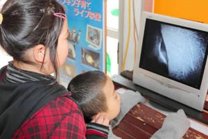 フンボルトペンギンの子育ての様子をライブ映像で見る子どもたち=富山市ファミリーパークで