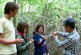 加藤さん(右)の作ったメープルシロップはほんのりとした甘さ=いずれも愛知県設楽町で