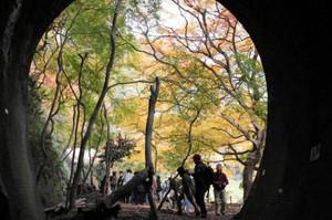 昨年秋の公開の様子=春日井市の愛岐トンネル群で